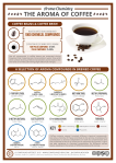 The Chemical Compounds Behind the Aroma of Coffee Infographic