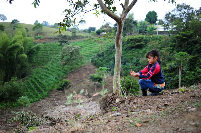 girl-coffee-farm