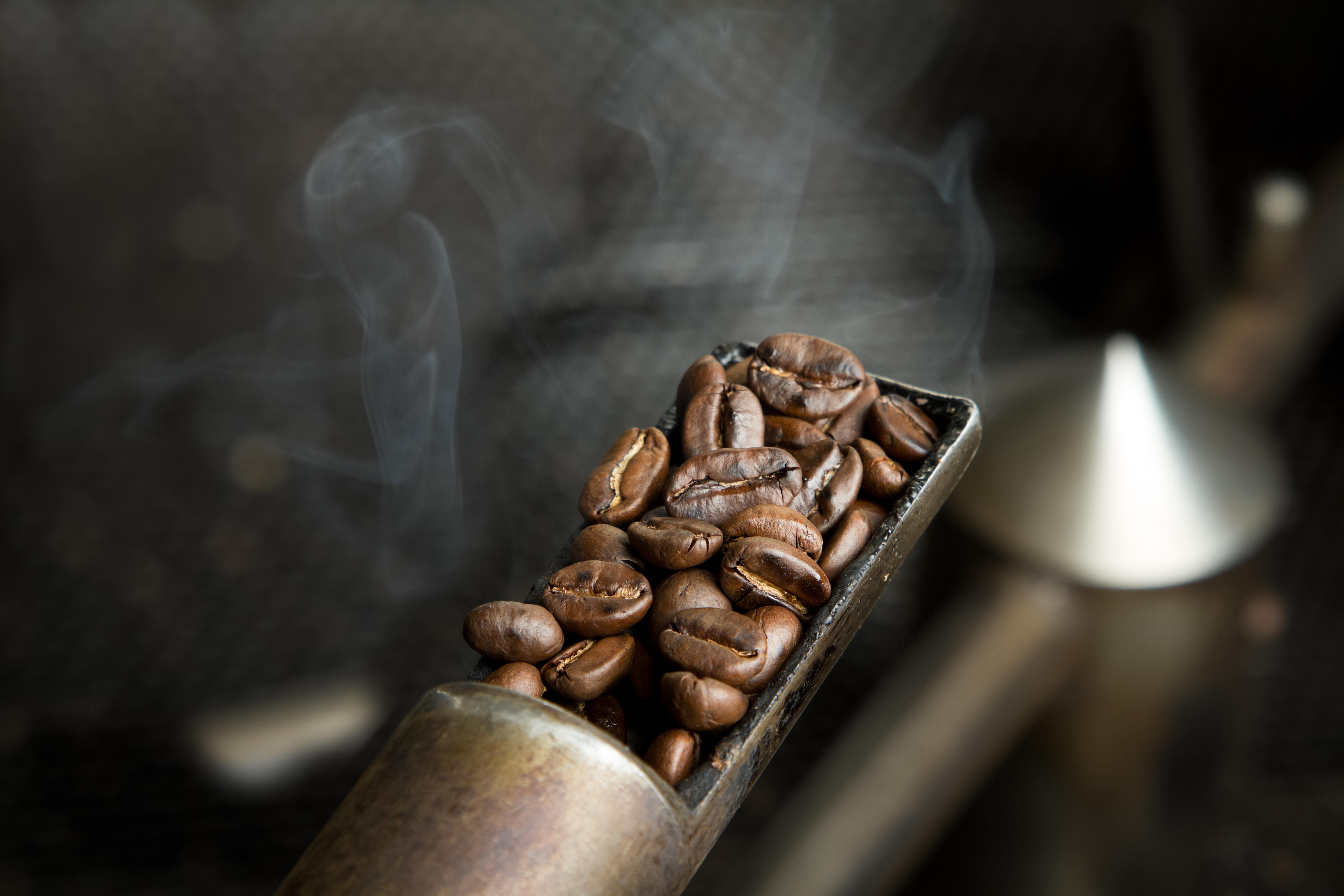 Coffee Beans Roasting Sample