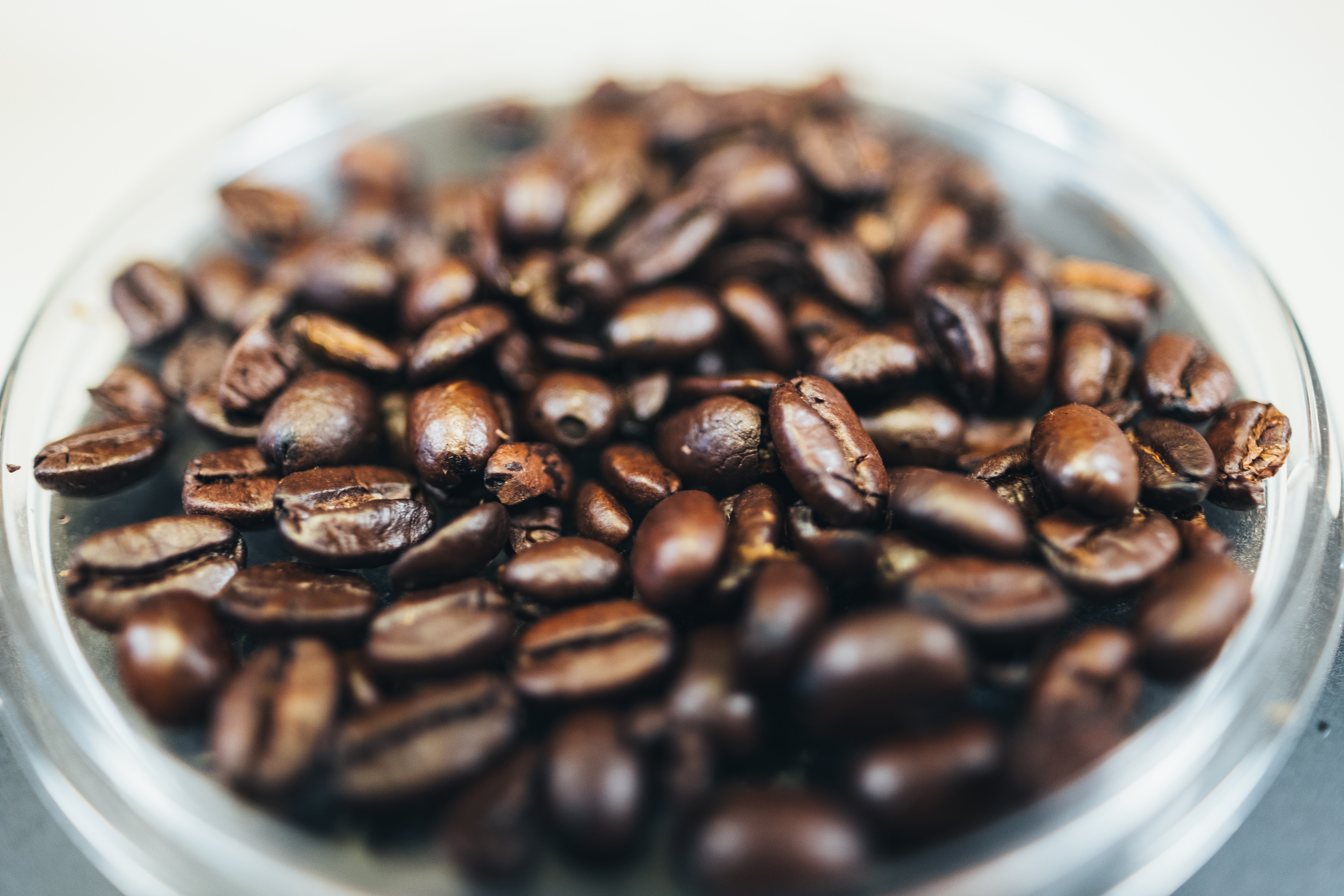 coffee-beans-andrew-seaman-547770-unsplash